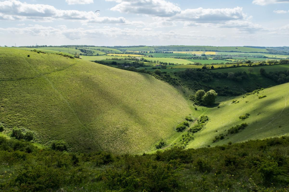Butser Hill South Downs National Park